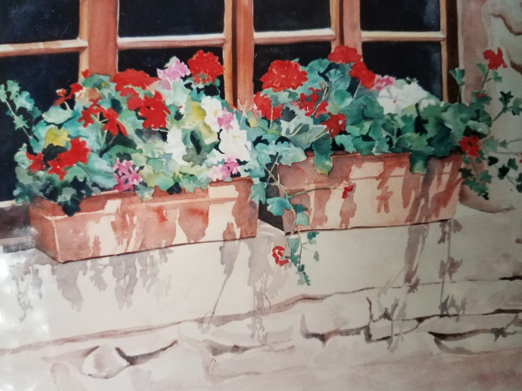 Window Boxes - watercolor
