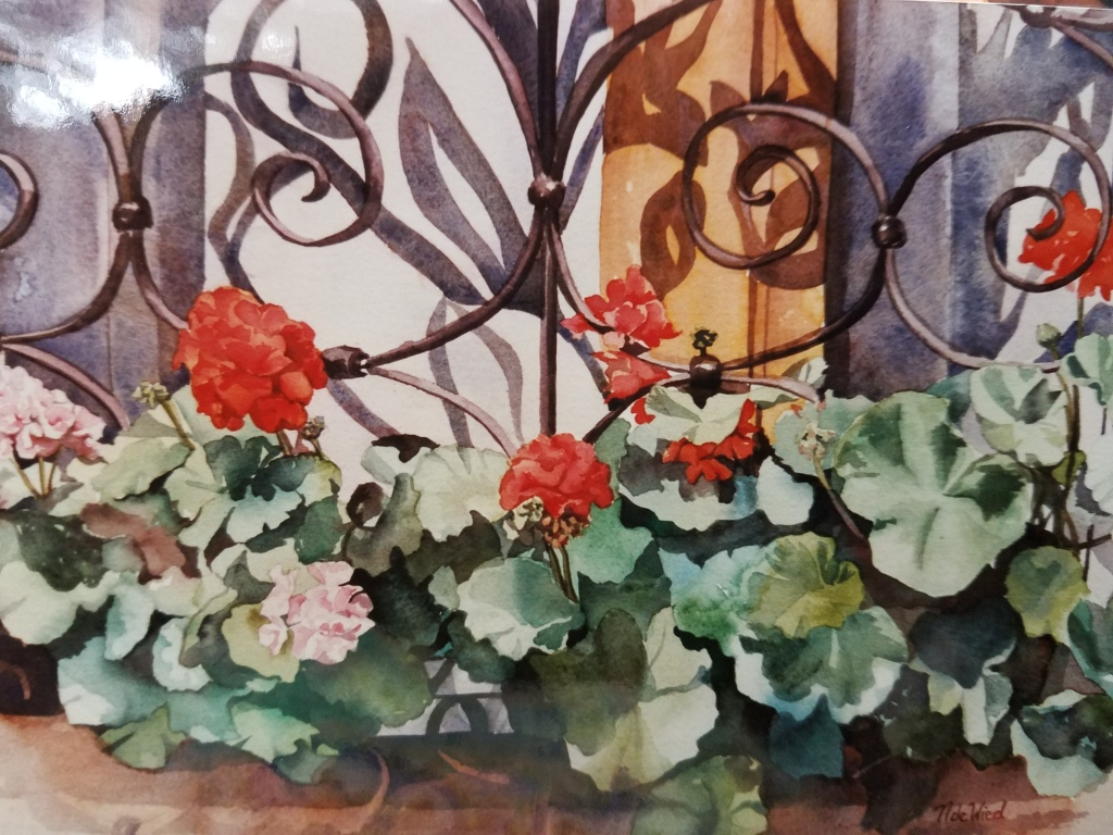 Geraniums and Grillwork - watercolor, private collection